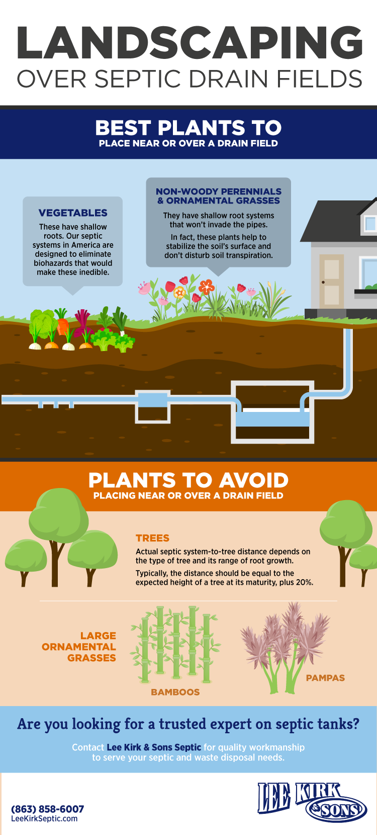 Perfect Plants To Place Over A Septic Drain Field Tips