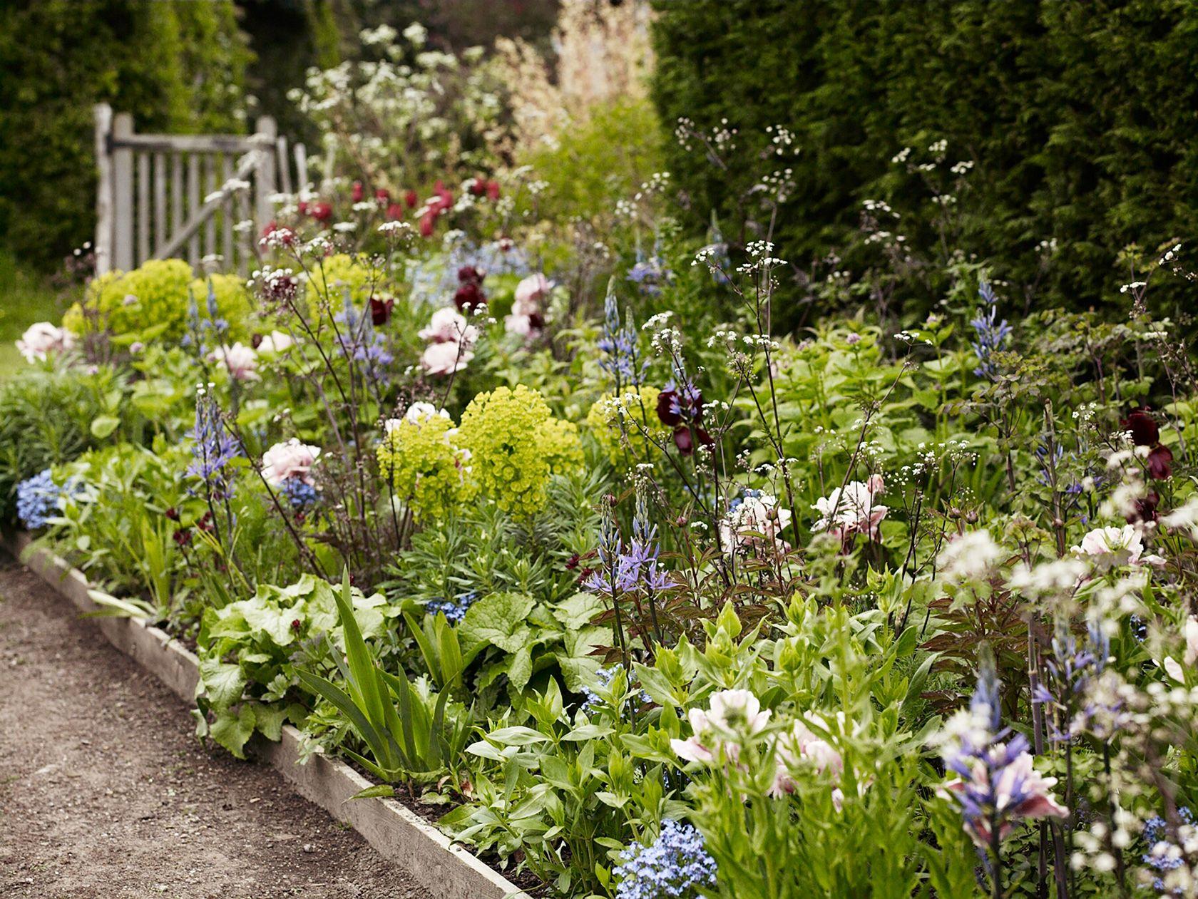 Luciano giubbilei dixter exteriorcountry pinterest gardens