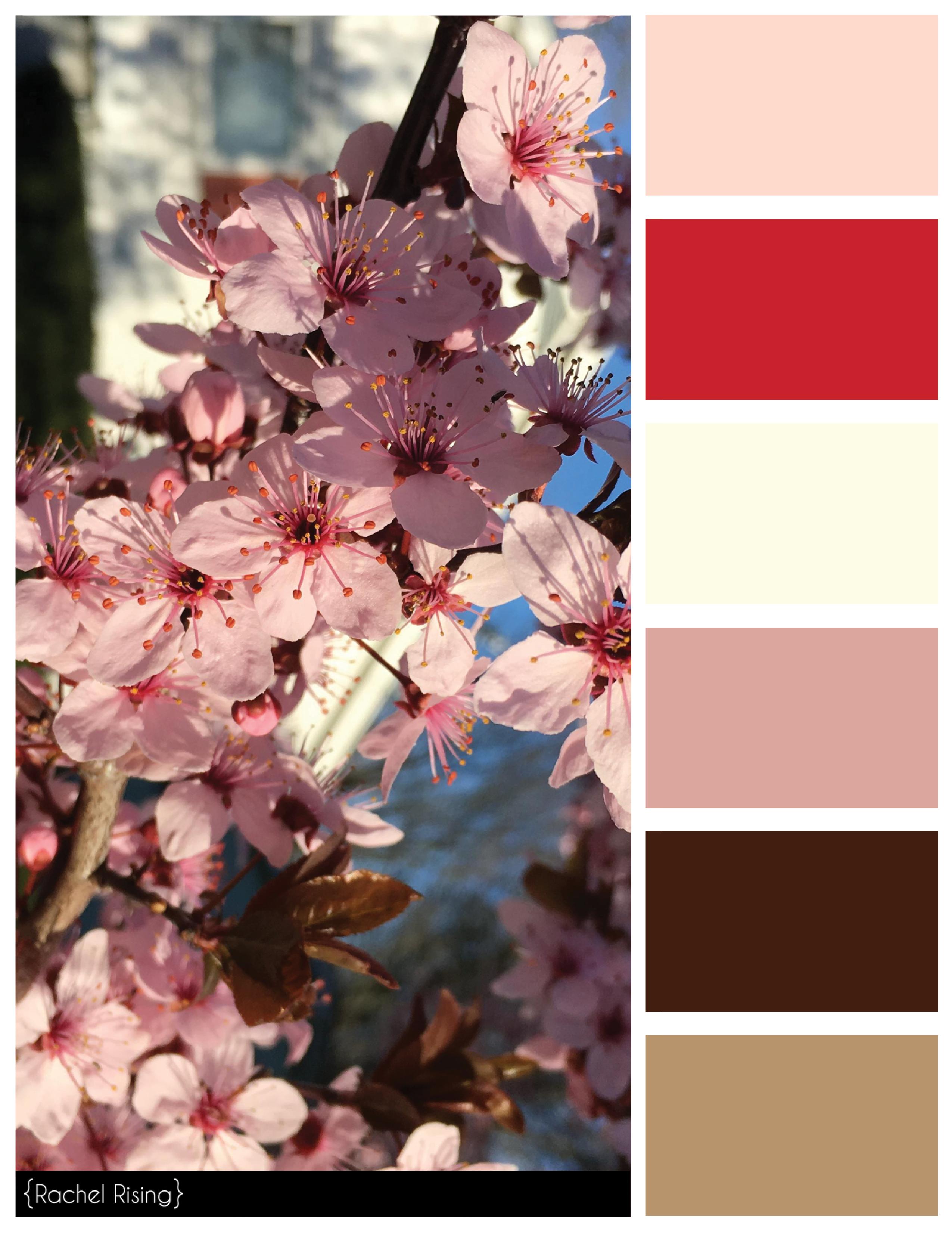 Color Swatches Rachelrisingdesign Winter Color Palette Japanese Colors Colour Pallette
