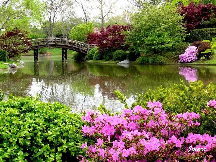 Photo paysage fleuri jardins paysages fleuris for Jardin fleuri lyon 9