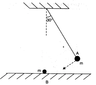 Ncert Solutions For Class 11 Physics Chapter 6 Work Energy And Power Https Www Learncbse In Ncert Solutions Class Work Energy And Power Energy Work Physics