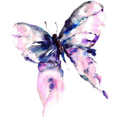 Watercolour Butterfly Floral Watercolor Paintings Butterfly