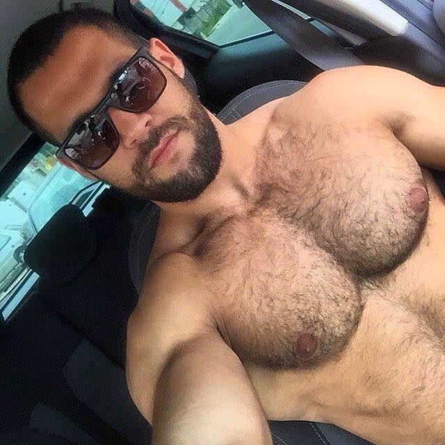 Gay hairy pecs