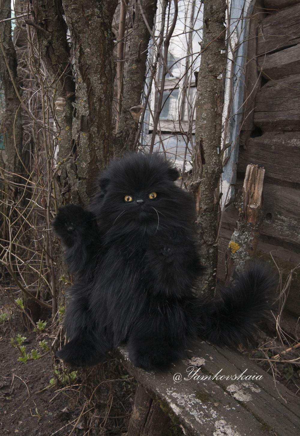 Cat, toy, Кот Бегемот