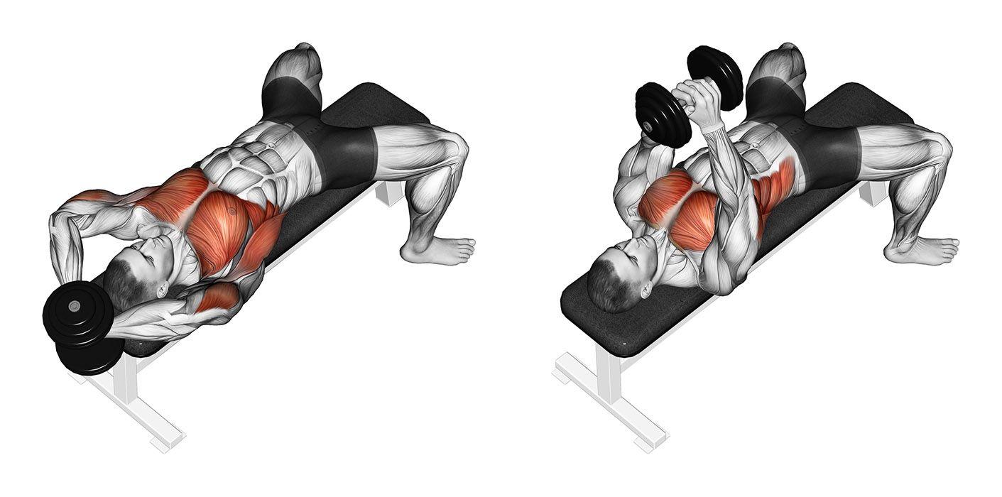 Talvez Um Dos Exercicios De Musculacao Que Mais Envolva Polemicas O Pullover Envolve Diversas Variaveis Uma D Chest Workouts Chest Workout Gym Chest Workout