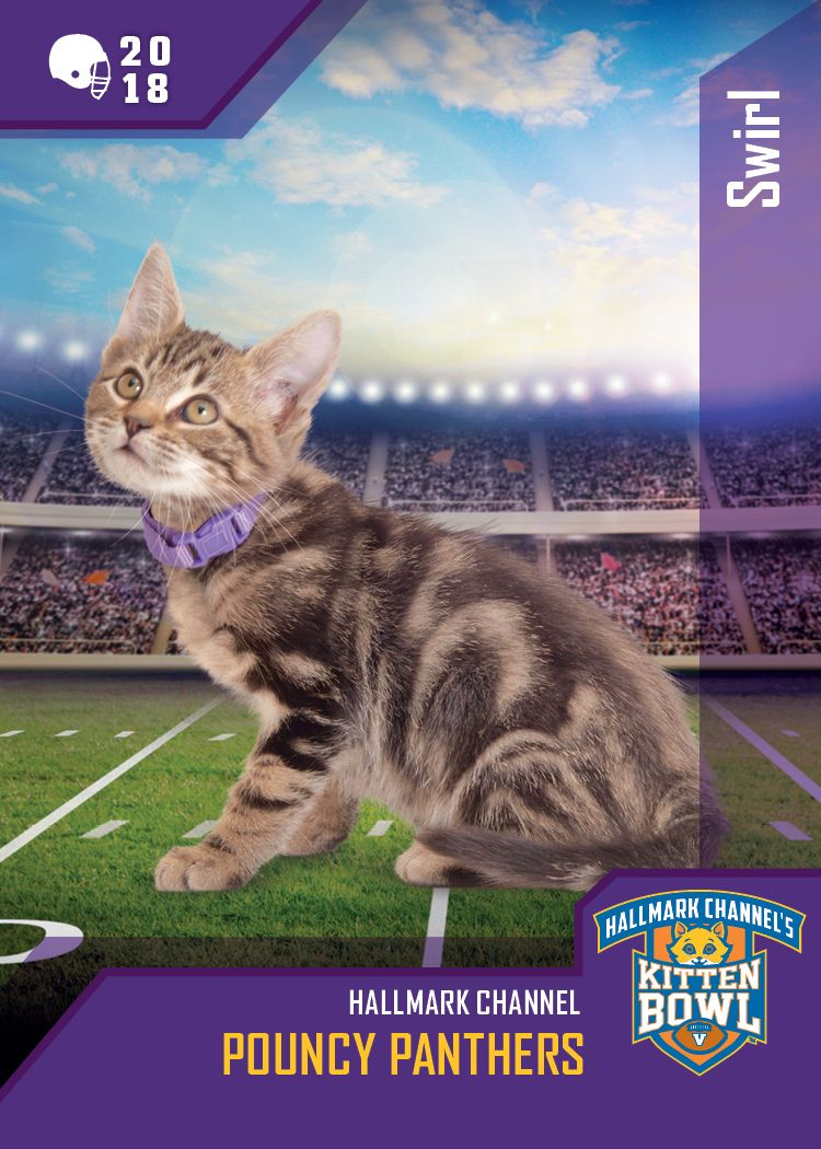 Cat center hallmark channel kitten bowl pinterest hallmark
