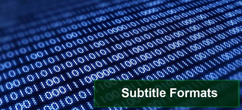 Subtitle Writing Formats Subtitle Services Pinterest - writing formats