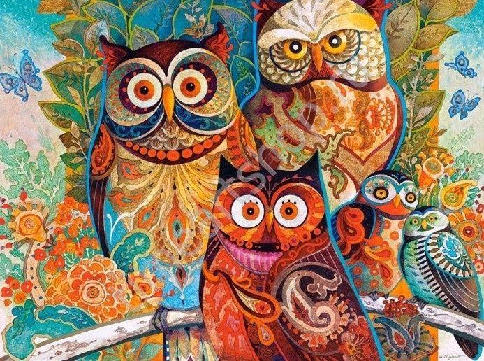 Яркие совы, картины раскраски по номерам, размер 40*50 см ...