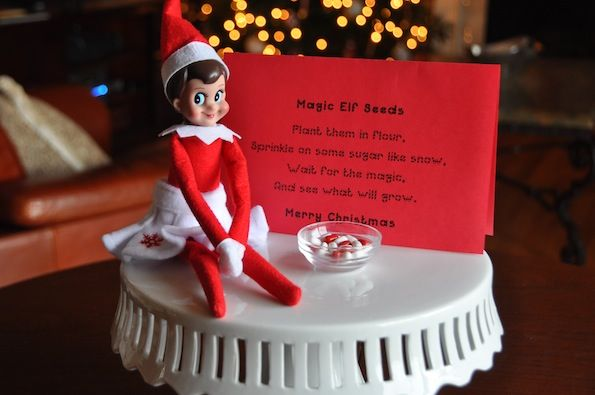 magic elf on the shelf seeds - use red and white tictacs ...