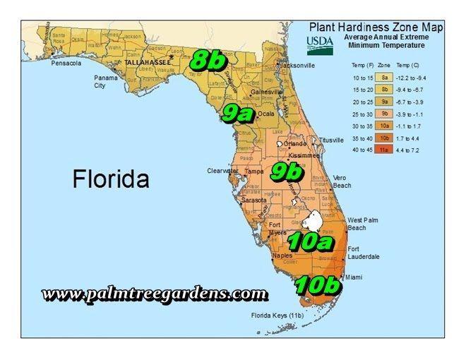 USDA Florida Map 386 364 1188
