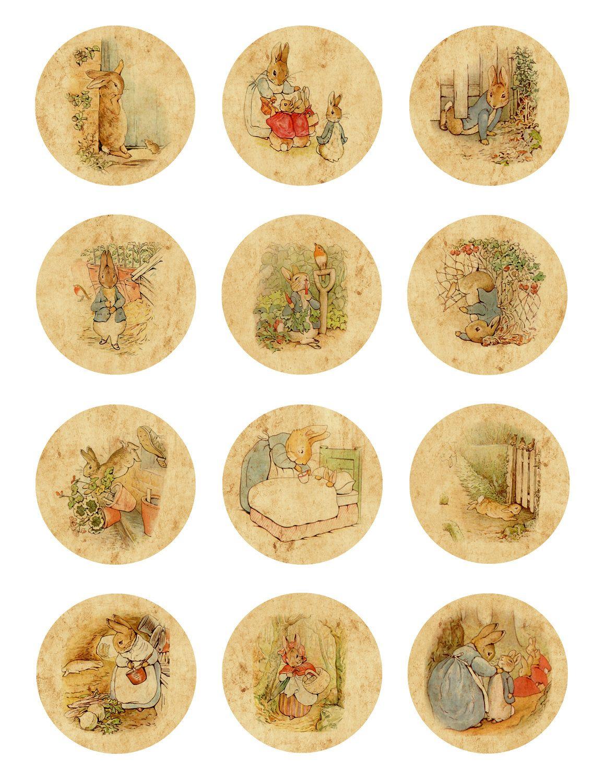 Vintage Peter Rabbit Cupcake Toppers