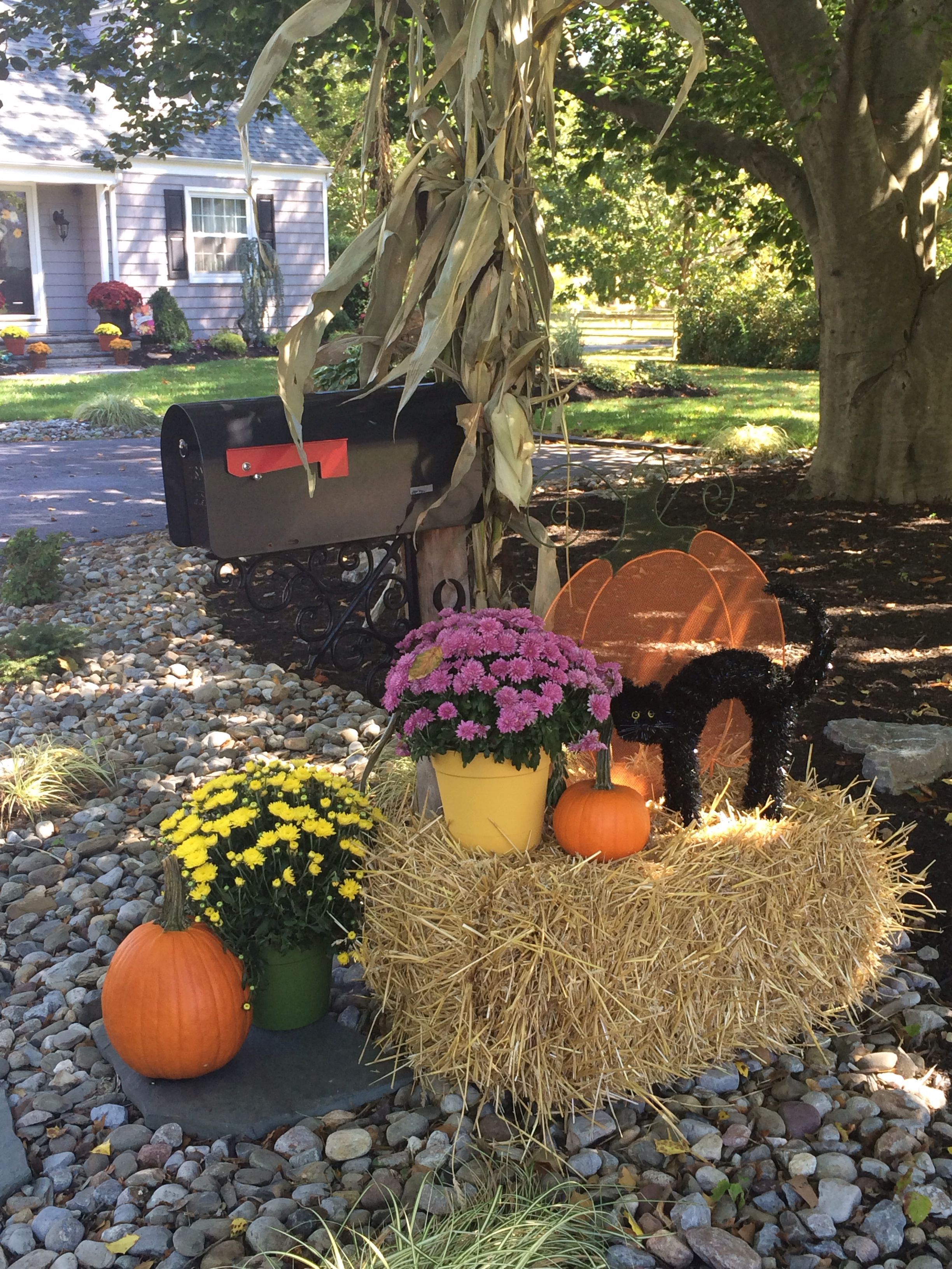 Decorating Around Harvest Gold Bathroom: Ideas For Decorating Your Mailbox At Fall. Harvest Decor