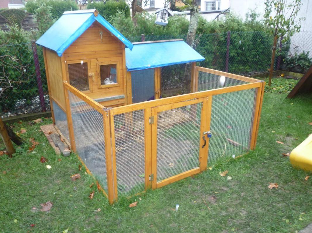 bildergebnis f r freilauf f r hasen bauen gardening pinterest hamster house and bunny. Black Bedroom Furniture Sets. Home Design Ideas