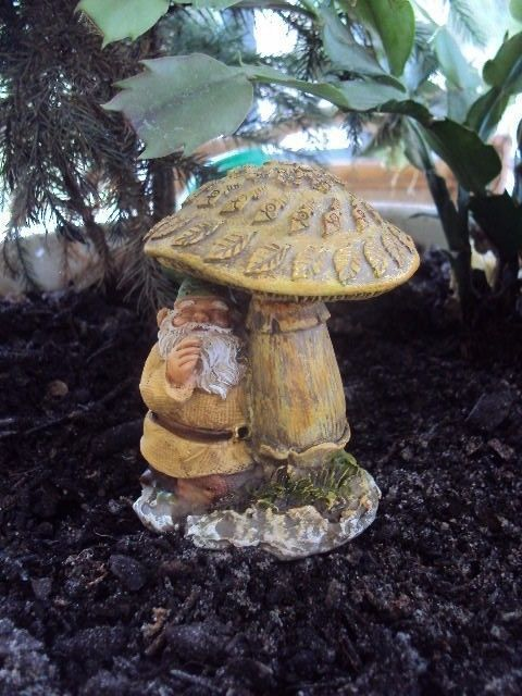"LAST ONE! MUSHROOM/"" NEW MINIATURE FAIRY GARDEN /""EDDIE THE GNOME TOADSTOOL"