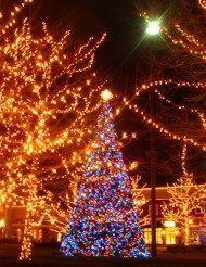 east texas drive thru christmas light parks