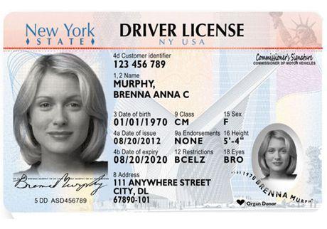 Evolution Of The New York Driver S License Passport Online