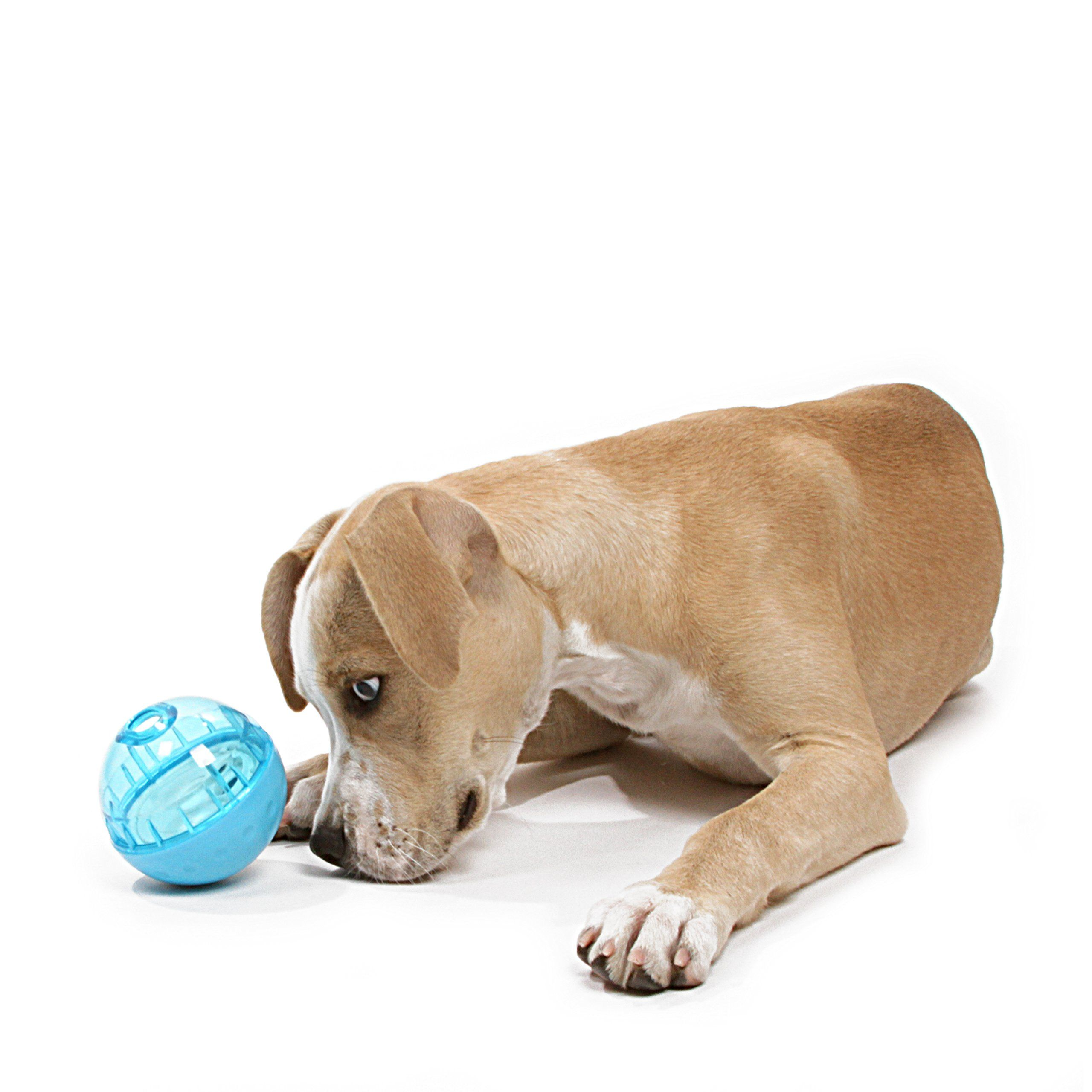 Our Pets Iq Treat Ball Interactive Food Dispensing Dog Toy Treat