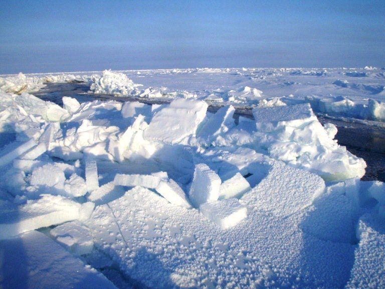 ¿Sabías que el Polo Sur es mucho más frío que el Polo Norte? ¿Sabes por qué? | Planeta Curioso¿Sabías que el Polo Sur es mucho más frío que el Polo Norte? ¿Sabes por qué? – Planeta Curioso