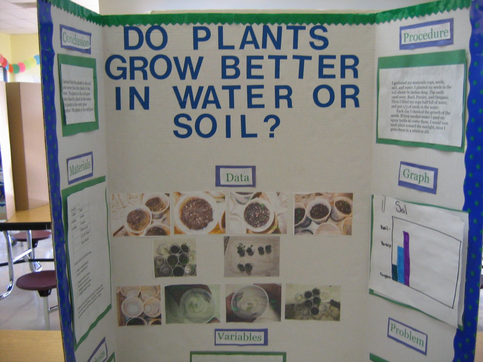 Science fair projects about plants growth science fair for Soil 4th grade science