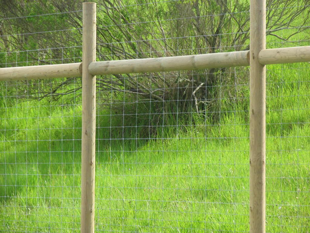 Deer Fence That Blends In Perfectly By Arbor Fence Inc