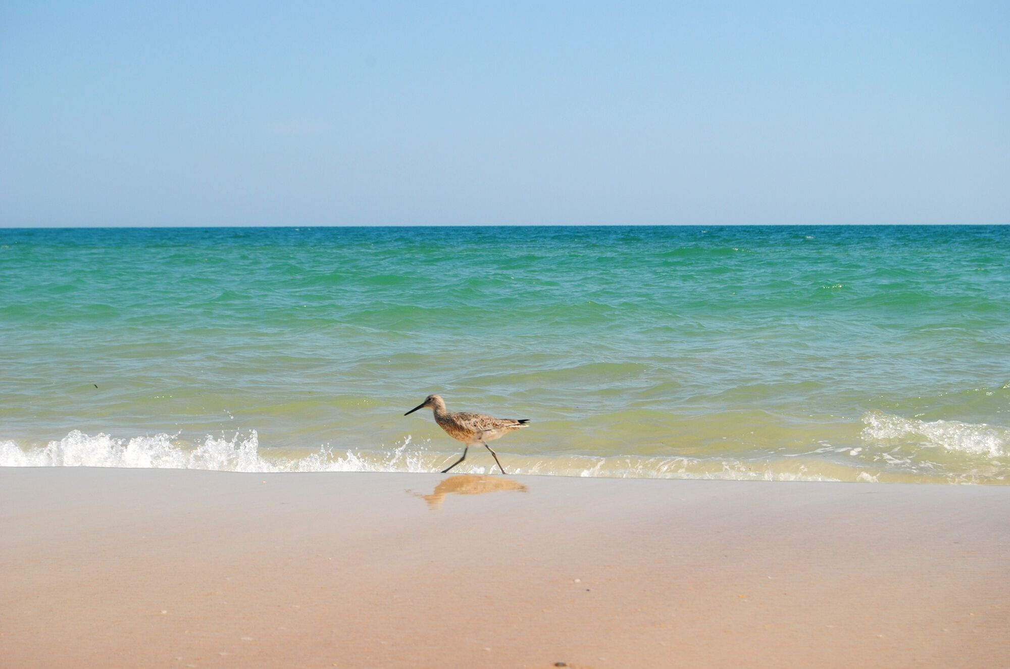 This Is One Of The Best Florida Winter Vacations St George Island Florida Winter Vacation St George Island Florida Florida In December