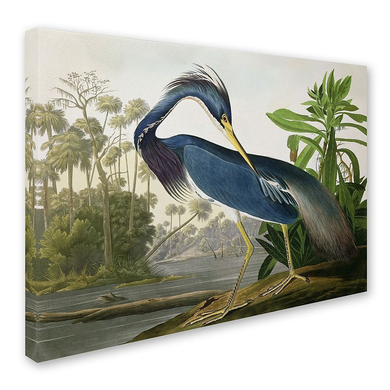 Louisiana Heron Canvas Wall Art, Multicolor