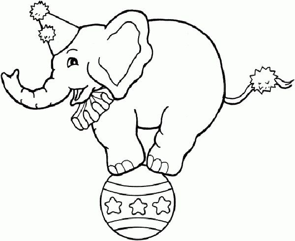 Circus Coloring Pages Circus Elephant On Ball