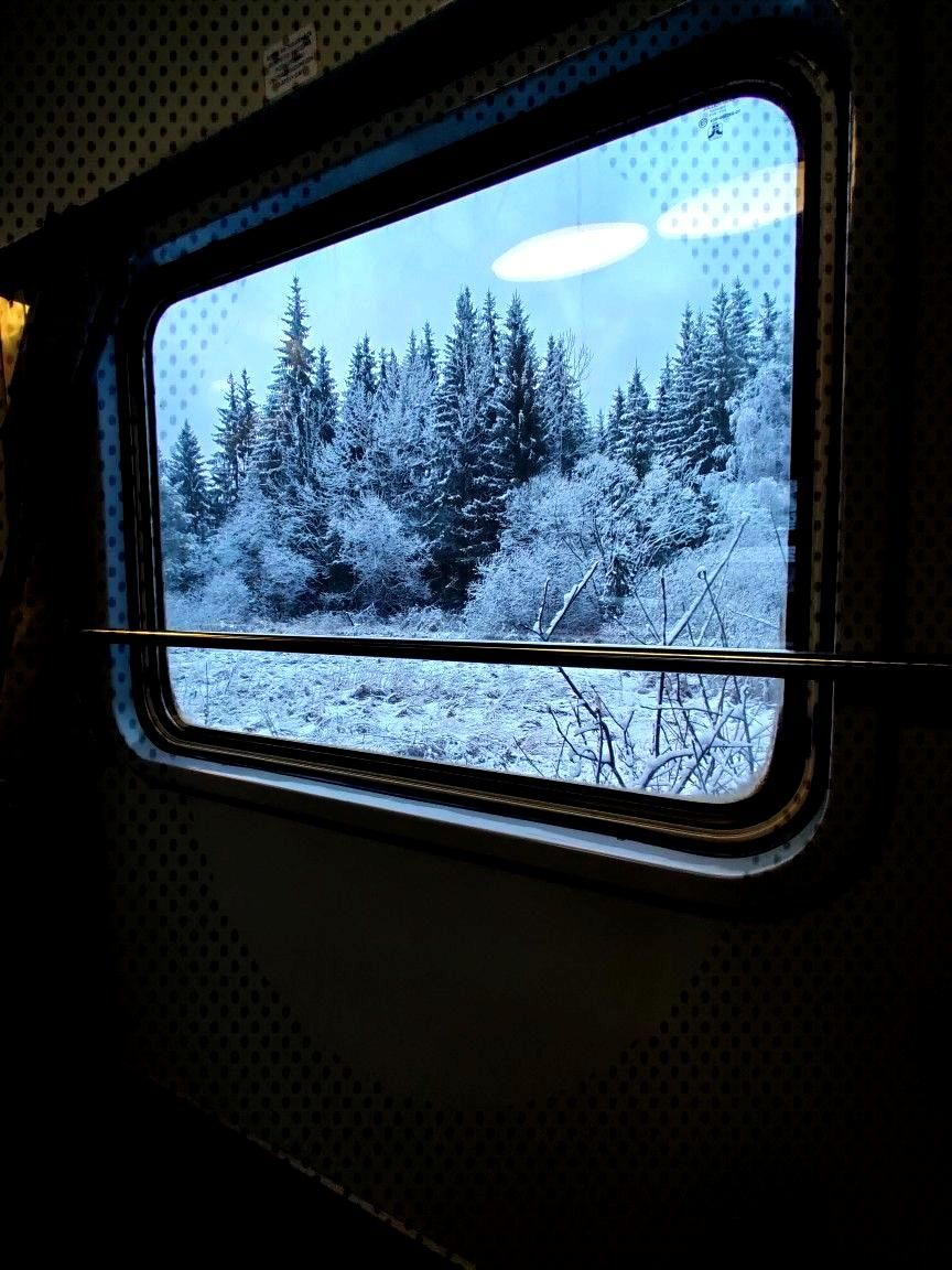 Winter express This was taken from the train on the route Suceava-Cluj-Napoca, near Vatra Dornei, B
