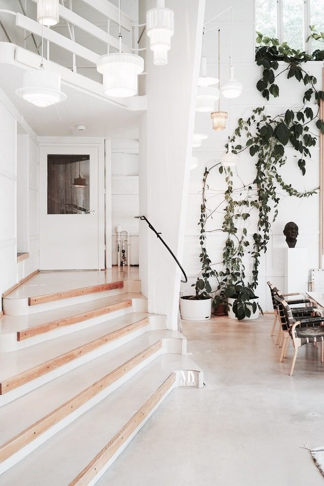 ➳ Daughter Of The Star Breather. #cheaphomedecor   Cheap Home Decor    Pinterest   Modern