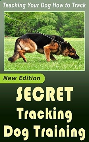 Secret Dog Tracking Training Teaching Your Dog How To Track
