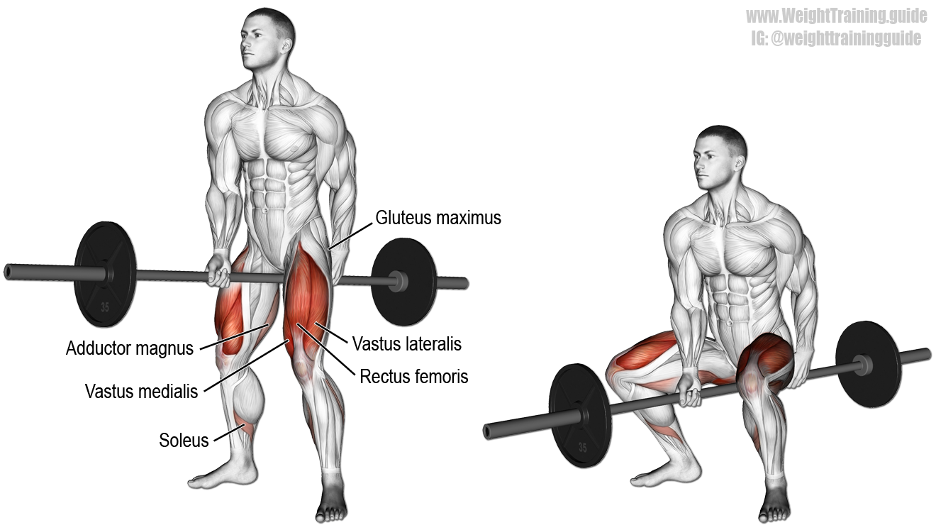 Jefferson Squat Exercise Instructions And Videos Weight Training Guide Squat Workout Fitness Body Jefferson Squat