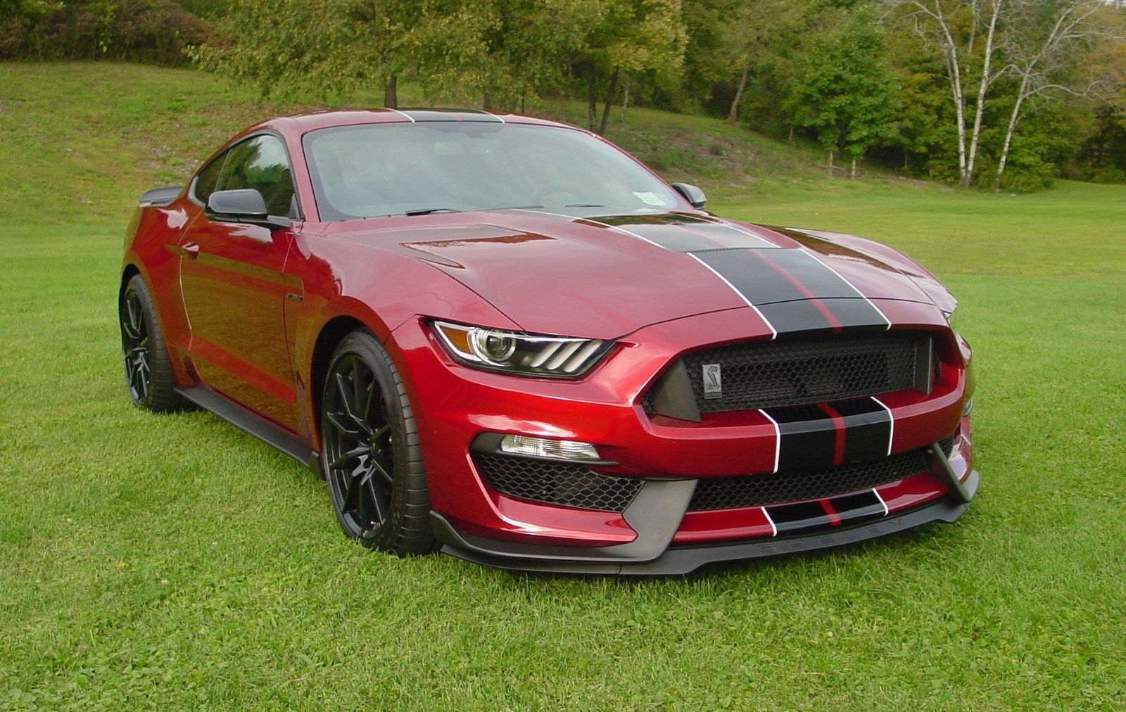 2017 Ford Mustang 2017 Ford Mustang Red Mustang 2017 Shelby Gt350