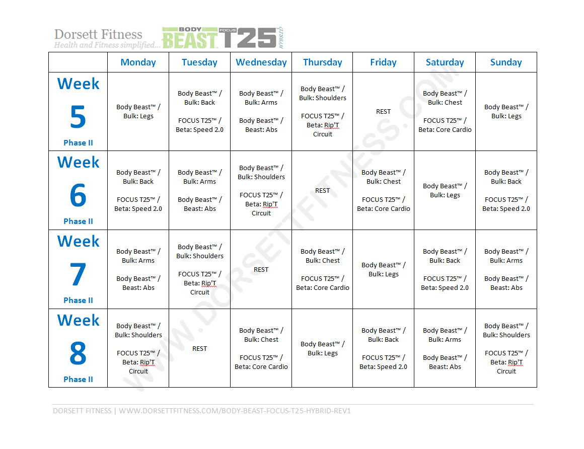 Body Beast Focus T25 Hybrid Workout Page 2