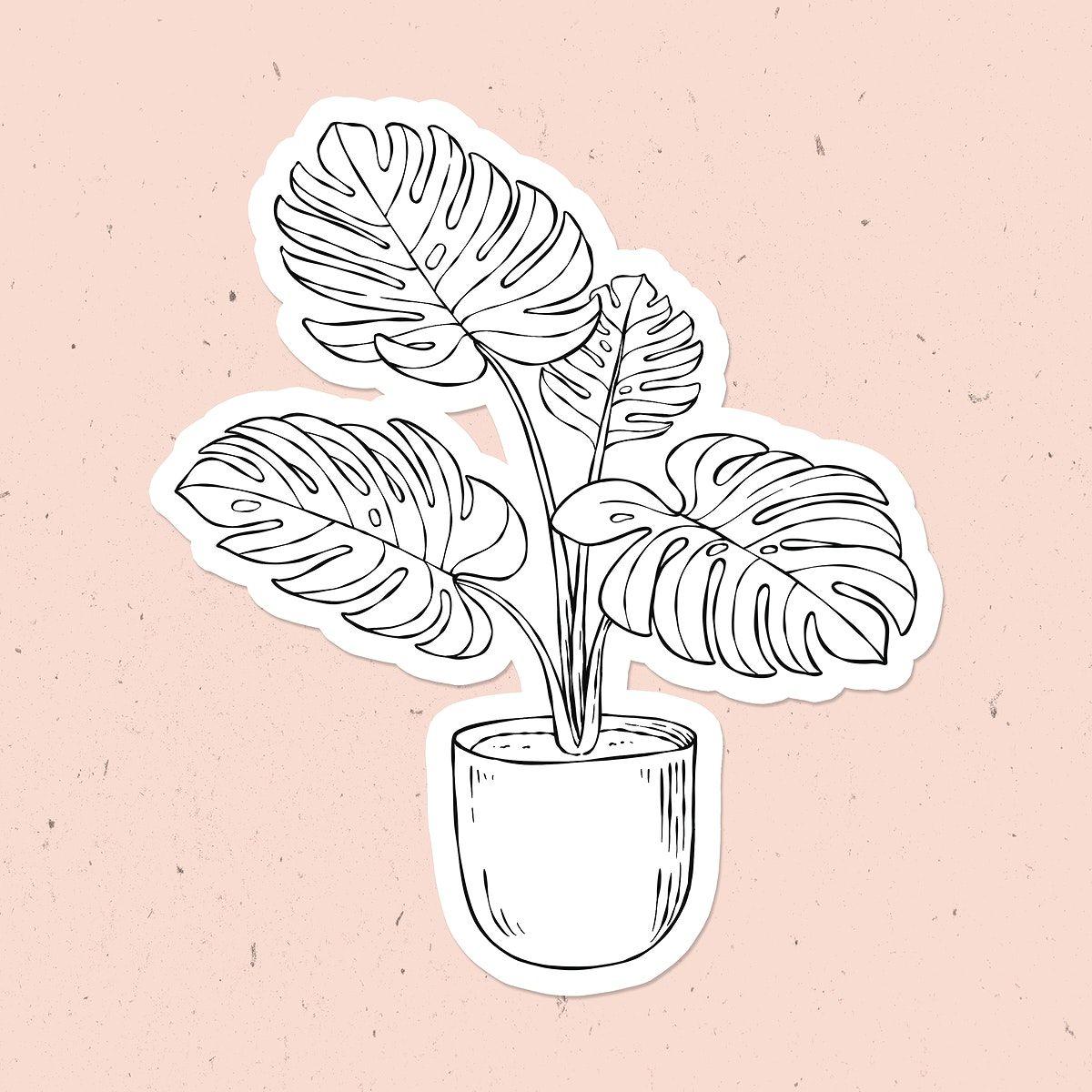 Download free illustration of Hand drawn monstera plant psd sticker 2448284