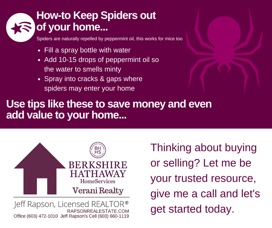 Oh my. Spiders... if you don't want them, here's the safe and natural way to keep them outside where they belong. Find out more at www.rapsonrealestate.com #ManchesterNH #DIY #Spiders