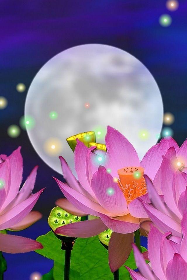 Lotus moon   Moon Whimsey   Pinterest   Lotus and Moon