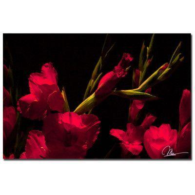 Trademark Art 'Gladiolus II' by Martha Guerra Photographic Print on Canvas