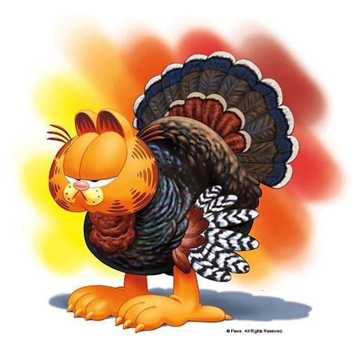 Guajolote Carteles Feliz Día De Acción De Gracias At Feliz Día