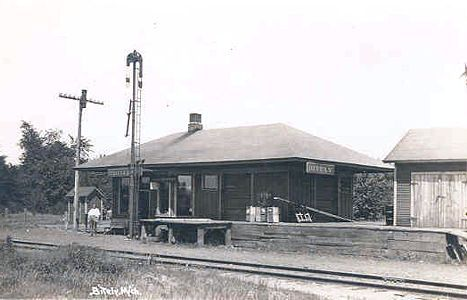 Newaygo Michigan | The Pere Marquette depot at Bitely, in Newaygo County.
