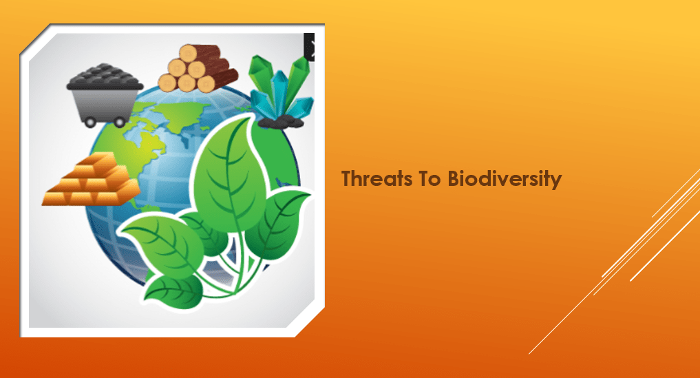 العلوم المتكاملة بوربوينت درس Threats To Biodiversity بالإنجليزي للصف التاسع Threat Biodiversity
