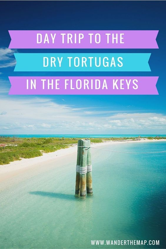 day trip to the dry tortugas national park in the florida keys with viator read