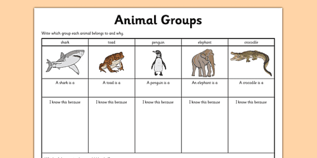 animal groups vocabulary worksheets Yahoo Image Search Results – Classification Worksheets