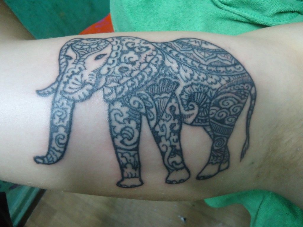 Making The Elephant Bamboo Style Filled With Henna Design