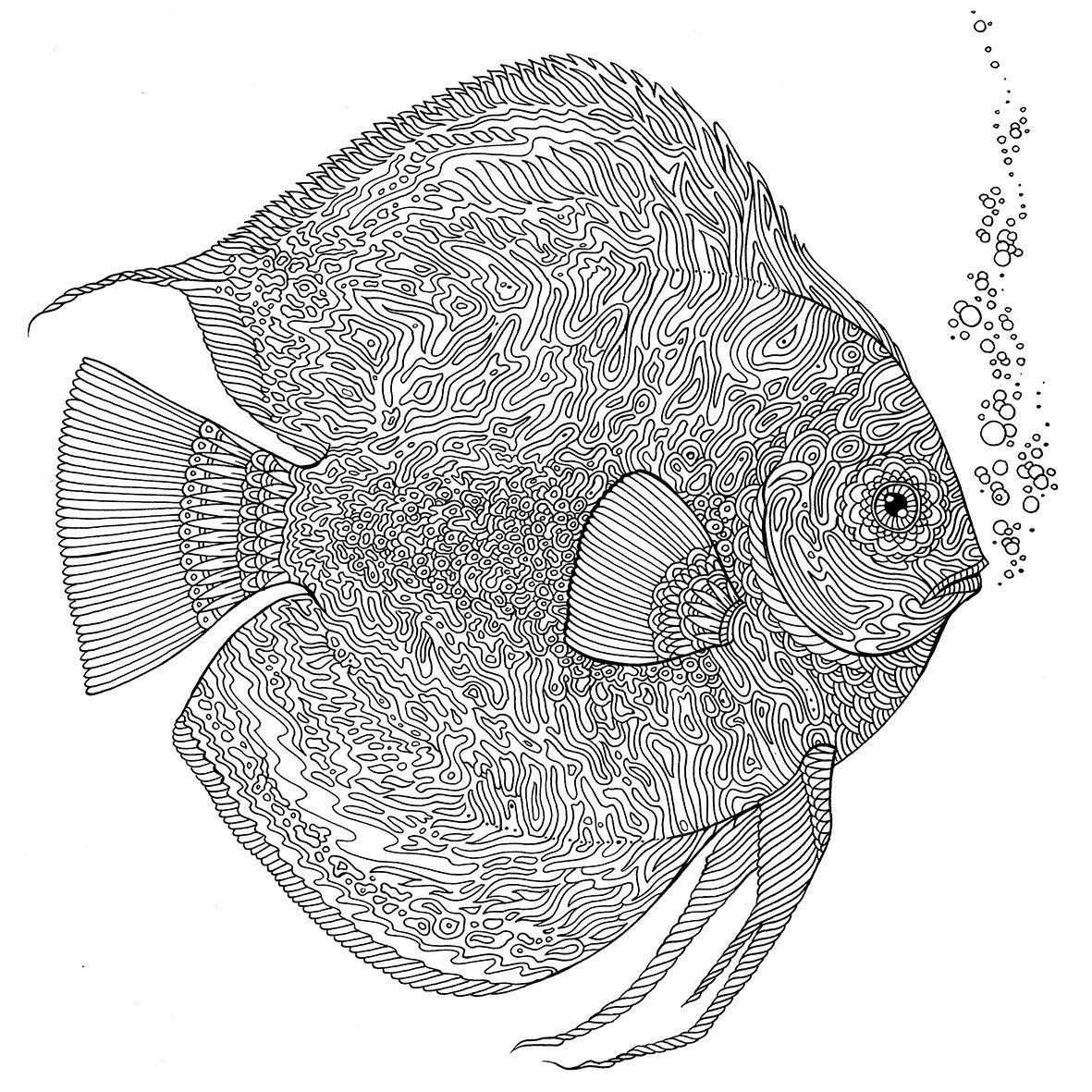 Pin by Catherine Alred on Adult coloring | Fish coloring ...