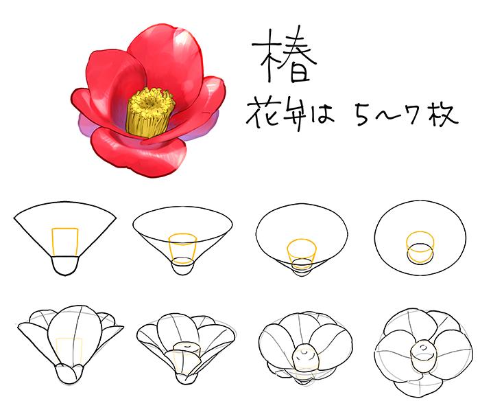 和の花植物の描き方4選椿乙女椿紫陽花桜 In 2019 Flower