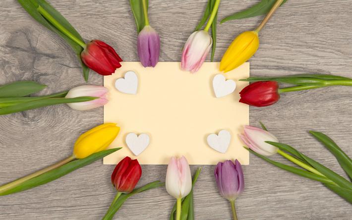 Descargar fondos de pantalla color de los tulipanes, de la primavera ...