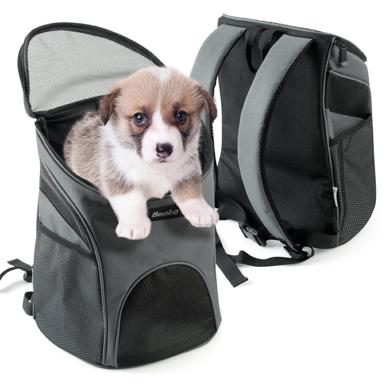 """Pet Safety - Você sabia que o Brasil tem o 2º maior mercado de produtos """"pet"""" do mundo? De olho neste público, lojas especializadas lançam com freqüência novos modelos de roupas, camas e uma infinidade de produtos para cães e gatos. Imagem: howsky"""