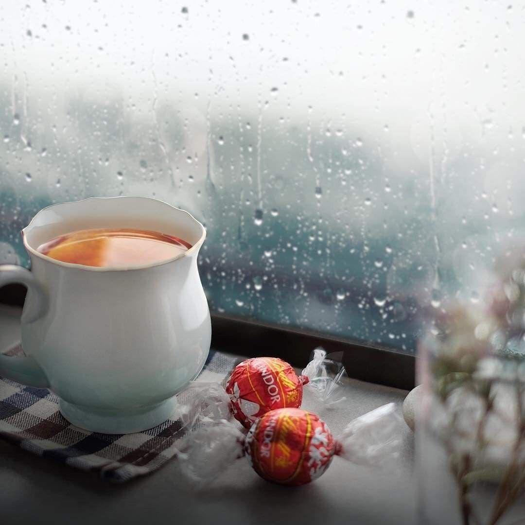 дождь чай плед
