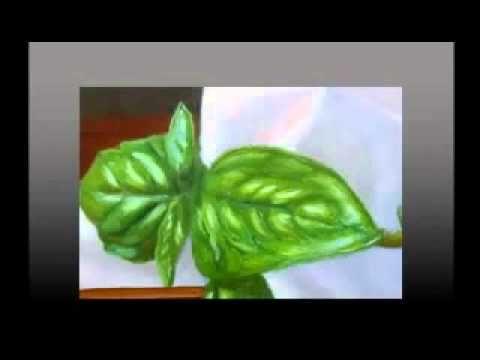 Como Pintar Al Oleo Paso A Paso Para Principiantes Curso De Pintura Al Oleo En Español Como Pintar En Oleo Pintura Al Oleo Pintar En Oleo