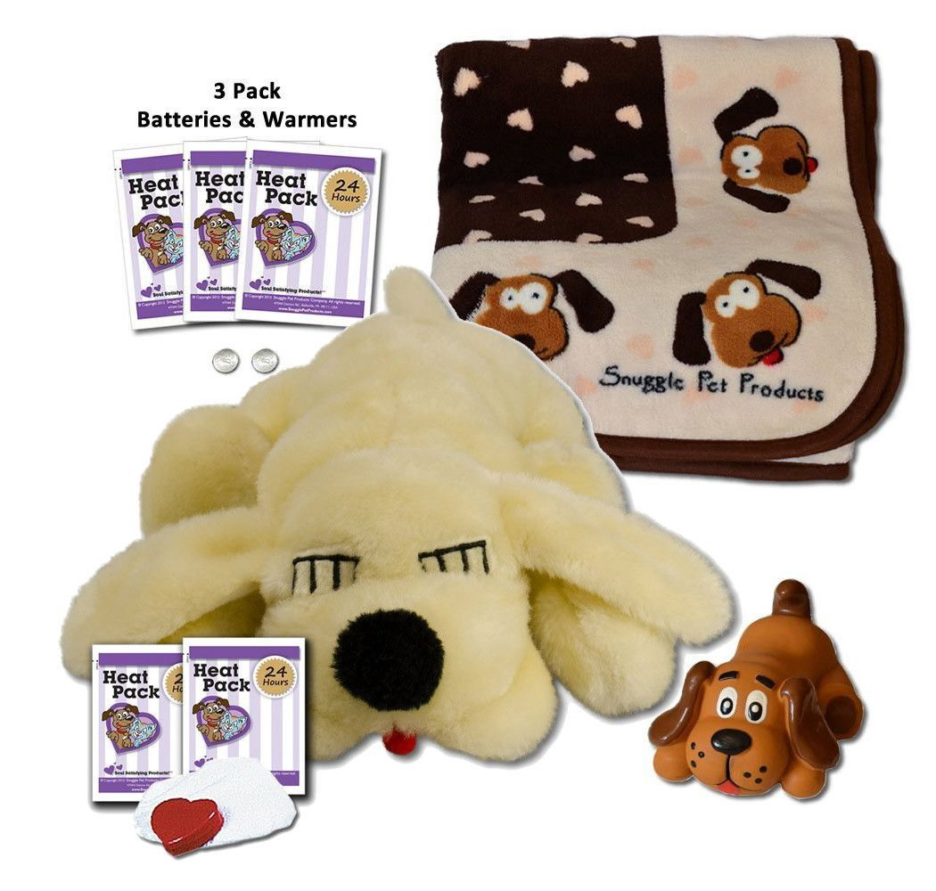 Finally The Perfect Starter Kit For A New Puppy This